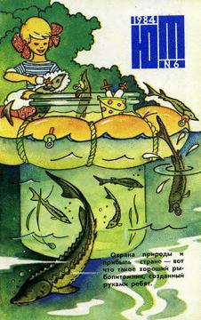 Юный техник. Выпуск №6 за июнь 1984 года.